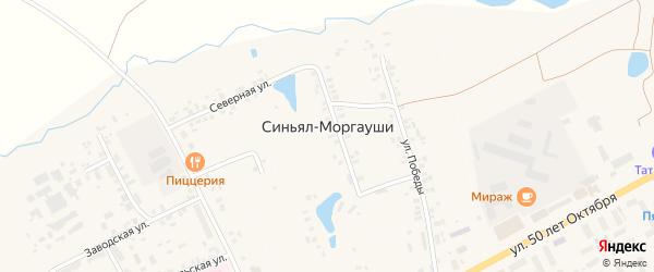 Луговая улица на карте деревни Синьяла-Моргауши с номерами домов