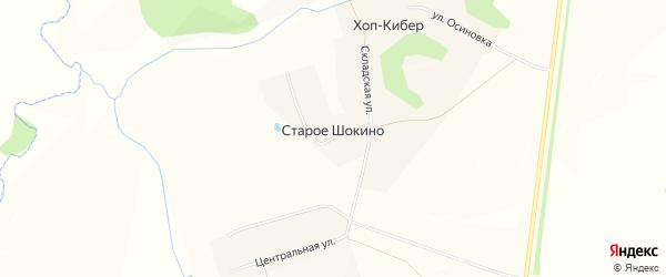 Карта деревни Старое Шокино в Чувашии с улицами и номерами домов