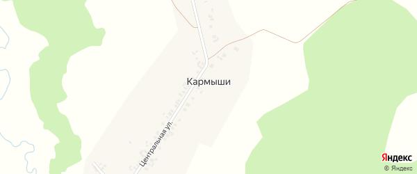 Центральная улица на карте деревни Кармыши с номерами домов