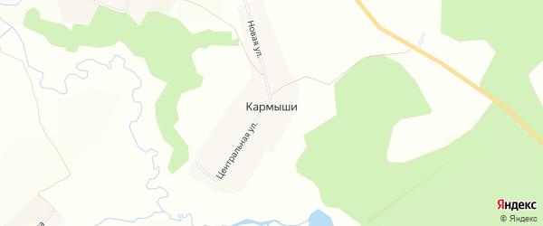 Карта деревни Кармыши в Чувашии с улицами и номерами домов