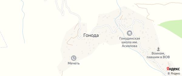 Улица Шамиля на карте села Гоноды с номерами домов