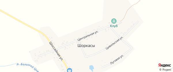 Центральная улица на карте деревни Шоркас с номерами домов