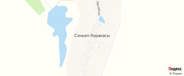 Лесная улица на карте деревни Синьял-Хоракасы с номерами домов