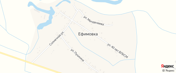 Малый переулок на карте села Ефимовки с номерами домов