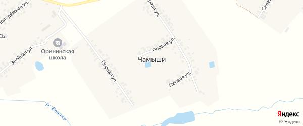 Вторая улица на карте деревни Чамыши с номерами домов