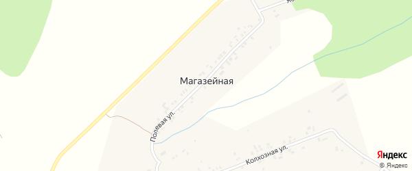 Полевая улица на карте Магазейной деревни с номерами домов