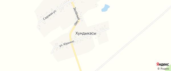 Токаревская улица на карте деревни Хундыкас с номерами домов