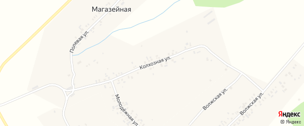 Колхозная улица на карте Магазейной деревни с номерами домов