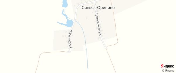 Центральная улица на карте деревни Синьял-Оринино с номерами домов