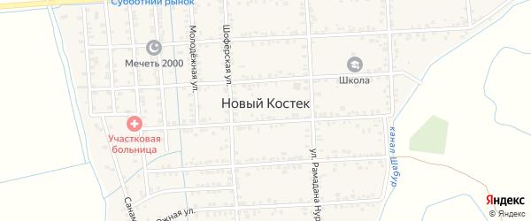 Улица Пушкина на карте села Нового Костека с номерами домов