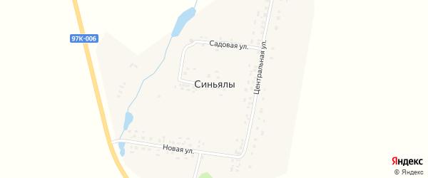 Центральная улица на карте деревни Синьялы с номерами домов