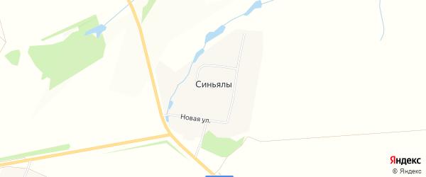 Карта деревни Синьялы в Чувашии с улицами и номерами домов