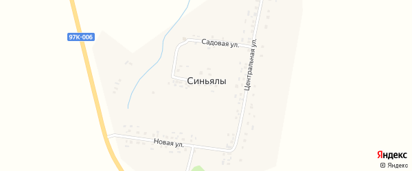 Малая улица на карте деревни Синьялы с номерами домов