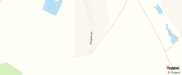 Новая улица на карте деревни Адабая с номерами домов