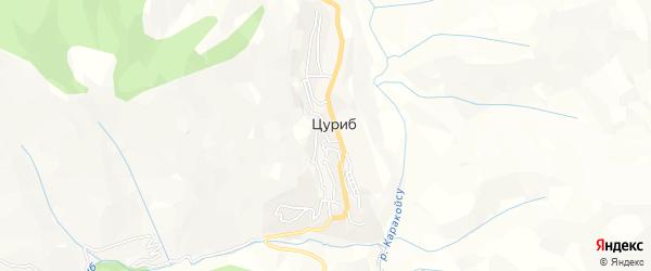 Карта села Цуриба в Дагестане с улицами и номерами домов