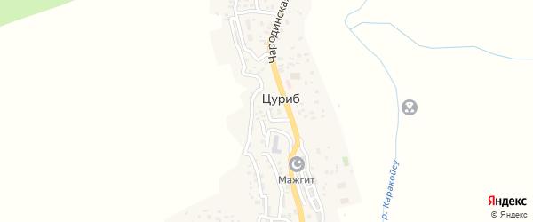 Улица Курбанова Асхабали на карте села Цуриба с номерами домов