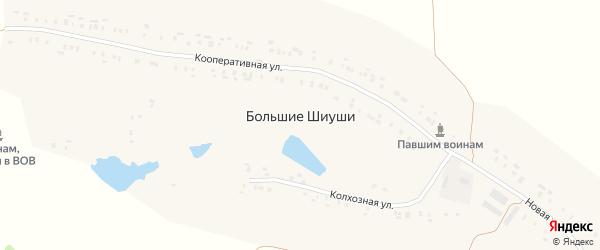 Колхозная улица на карте деревни Большие Шиуши с номерами домов