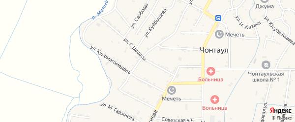 Улица Г.Цадасы на карте села Чонтаула с номерами домов