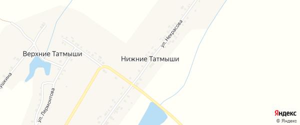 Улица Некрасова на карте деревни Нижние Татмыши с номерами домов