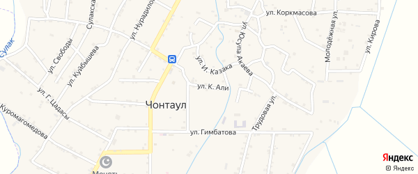 Улица К.Али на карте села Чонтаула с номерами домов