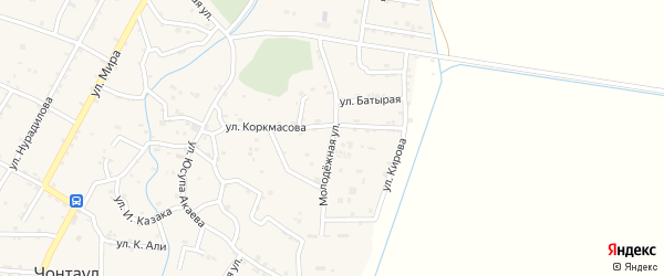 Молодежная улица на карте села Чонтаула с номерами домов