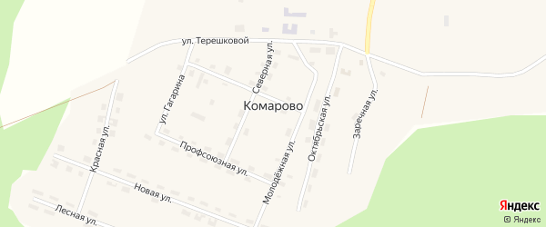 Улица Гагарина на карте поселка Комарово с номерами домов