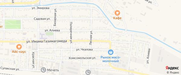 Лесная улица на карте Кизилюрта с номерами домов