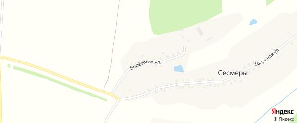 Березовая улица на карте деревни Сесмеры с номерами домов