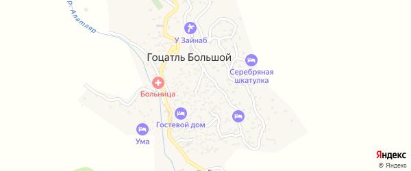 Улица Шамиля на карте села Гоцатля Большой с номерами домов