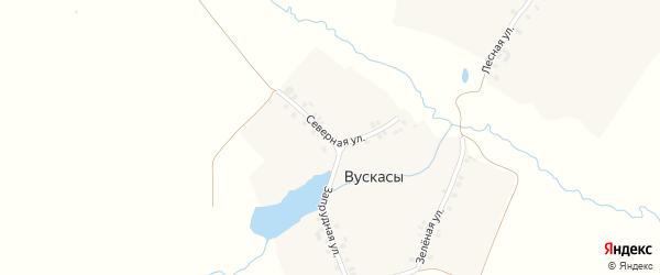 Северная улица на карте деревни Вускасы с номерами домов