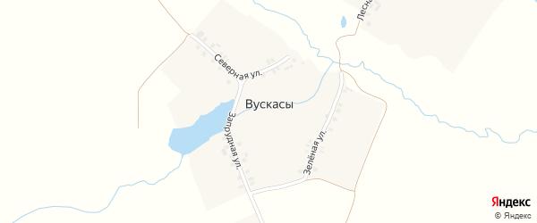 Зеленая улица на карте деревни Вускасы с номерами домов