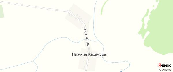 Заречная улица на карте деревни Нижние Карачуры с номерами домов