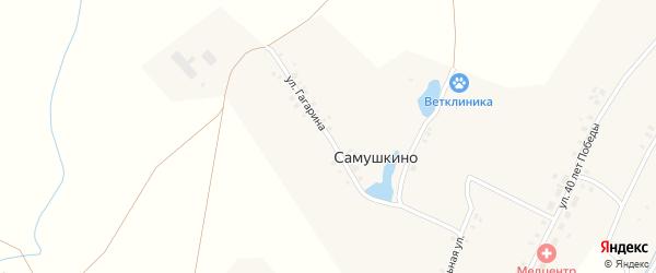 Улица Гагарина на карте деревни Самушкино с номерами домов