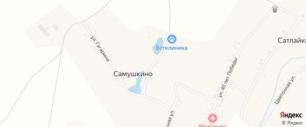 Набережная улица на карте деревни Самушкино с номерами домов
