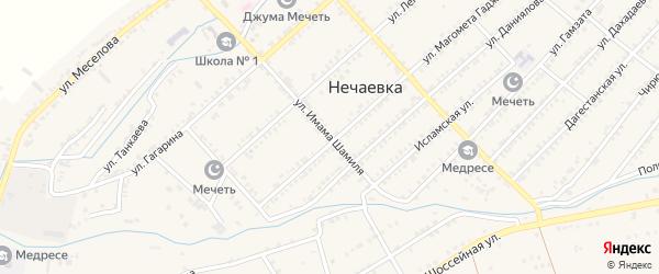 Улица И.Шамиля на карте села Нечаевки с номерами домов