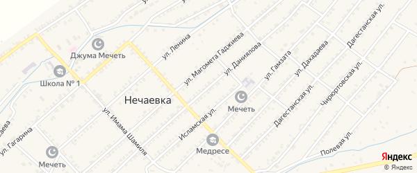 Улица Даниялова на карте села Нечаевки с номерами домов
