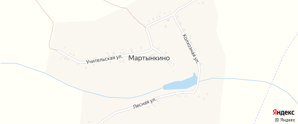 Колхозная улица на карте деревни Мартынкино с номерами домов