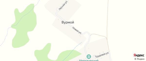 Лесная улица на карте деревни Вурмой с номерами домов