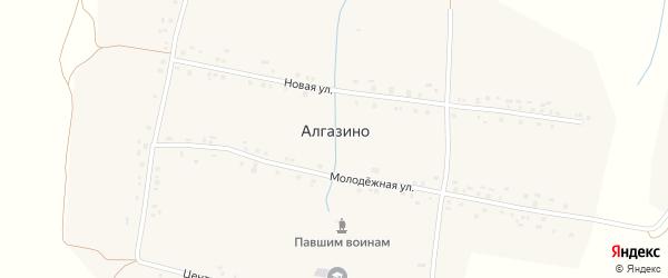 Центральная улица на карте деревни Алгазино с номерами домов