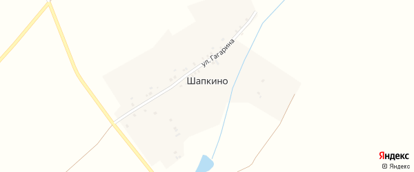 Улица Николаева на карте деревни Шапкино с номерами домов