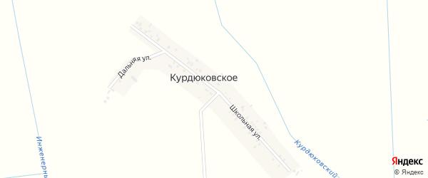 Школьная улица на карте Курдюковского села с номерами домов