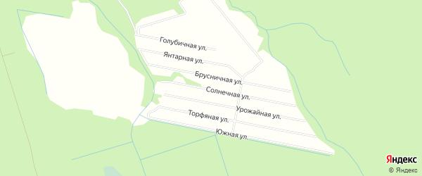 Карта садового некоммерческого товарищества СОТА Русановки в Архангельской области с улицами и номерами домов