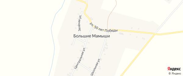 Улица 50 лет Победы на карте деревни Большие Мамыши с номерами домов