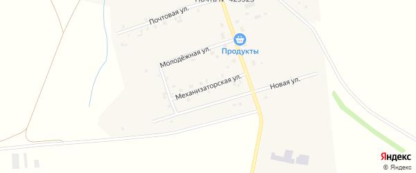 Механизаторская улица на карте деревни Яныши с номерами домов