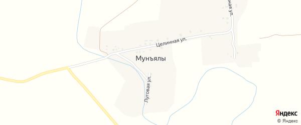 Целинная улица на карте деревни Мунъялы с номерами домов