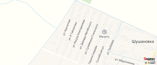Улица Расула Алигаджиева на карте Стальского села с номерами домов