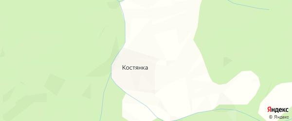 Карта деревни Костянки в Архангельской области с улицами и номерами домов