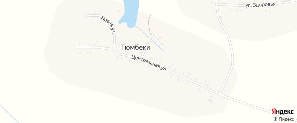 Центральная улица на карте деревни Тюмбеки с номерами домов