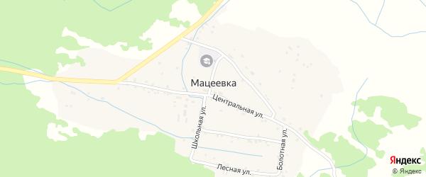Шоссейная улица на карте села Мацеевки с номерами домов