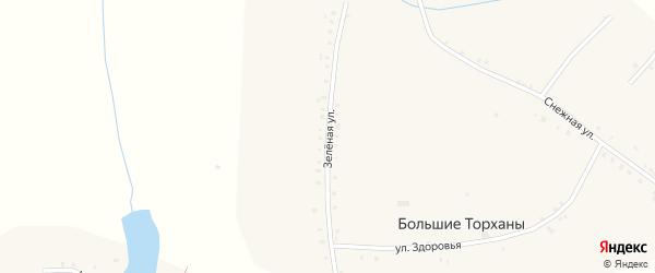Зеленая улица на карте деревни Большие Торханы с номерами домов